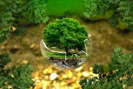 környezetvédelmi program